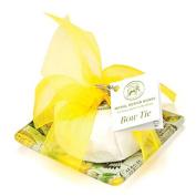 Michel Design Works Lemon Basil Glass Soap Dish & Set Bow Tie