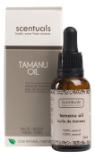 Scentuals - Pure Tamanu Oil - 100% Natural Beauty Oil