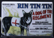Rin Tin Tin Dog of the Regiment Refrigerator Magnet.