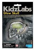 4M 4646 Glow Skull Keyring Toy