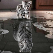 VIASA Cat and Tiger DIY 5D Diamond Embroidery Painting Cross Stitch Home Decor Craft