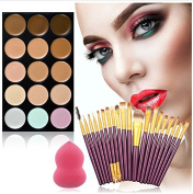 dolly2u Pro 15 Colours Makeup Concealer Cream Palette Kits With 20Pcs Foundation Blush Powder Brushes Soft Cosmetic Puff Sponge