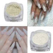 Trendy Nail 1g 3D DIY Nail Art Glitter Beauty Silver Colours Sequins Sparkly Rhinestone/Powder Dust S01-04