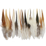Rooster feathers, 100+ 15cm - 20cm natural red saddle feathers for crafting, decoration, millinery supply