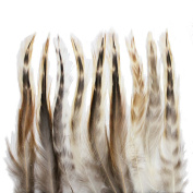 Rooster feathers, 50+ 13cm - 18cm natural red chinchilla hackle feathers for crafting, decoration