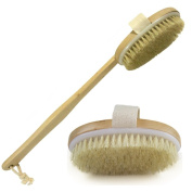 Planet Hope Dry Skin Brush for Detoxing Lymphatic Dry Skin Sloughing Cellulite Diminishing Skin Appearance Improvement Long Handle Brush that's Removable and Made into a Smaller Hand Held Brush