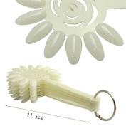 10pcs/wheel 120 Colour Natural Sunflower Nail Polish Display Sticks w Ring False Nail Art Display Chart Practise Fan Wheel Tool