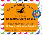 Chocolate Chirp Cookie (1)