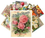 Postcard Pack 24pcs Flowers Vintage Seed Pockets Gardens and Roses
