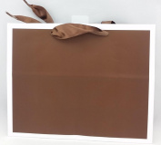 Hallmark Medium Chocolate Brown W/ White Trim Gift Bag