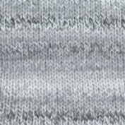 Plymouth Yarn Encore Dynamo 6 Greys
