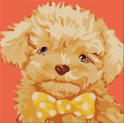 CaptainCrafts New Paint by Number Kits - Velvet Dog 25cm x 25cm Frame - Diy Painting by Numbers for Kids, As Children's Day Birthday gift