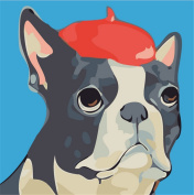 CaptainCrafts New Paint by Number Kits - Bulldog 25cm x 25cm Frame - Diy Painting by Numbers for Kids, As Children's Day Birthday gift