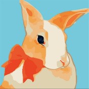 CaptainCrafts New Paint by Number Kits - Gentle Rabbit 25cm x 25cm Frame - Diy Painting by Numbers for Kids, As Children's Day Birthday gift