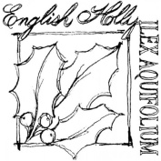 Holiday English Holly Plant Bloom Stampington And Co Wooden Rubber Stamp