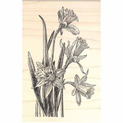 Daffodil Flowers Rubber Stamp