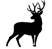 Pack of 3 Full Buck Deer Stencils Made from 4 Ply Mat Board 11x14, 8x10, 5x7