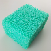 Think Beauty Green Exfoliating Sponges