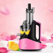 Natalie Styx Pink Wide Chute Slow Juicer