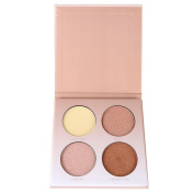 Petansy 4 Colours Face Concealer Kit Shimmer Highlighters Contour Powder Palette