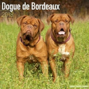 Dogue de Bordeaux Calendar 2018