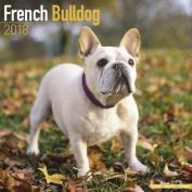 French Bulldog Calendar 2018