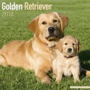 Golden Retriever Calendar 2018