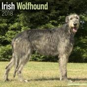 Irish Wolfhound Calendar 2018