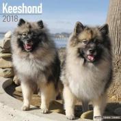 Keeshond Calendar 2018