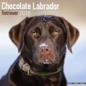 Chocolate Labrador Retriever Calendar 2018