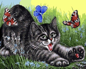 Arts Language Wooden Framed 41cm x 50cm Paint by Numbers Diy Painting -Cat catching butterflies