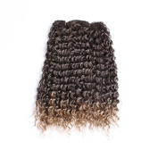 50cm Curly Synthetic Hair Extensions Ombre hair extensions weft Jerry Curl Hair Weft Extensions