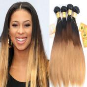 Black Rose Hair Peruvian 8A Grade Virgin Ombre Hair Silky Remy Straight Weft 3 Bundles 100% Unprocessed Virgin Human Hair Extensions T1B/4/27 Ombre Fashion Colour 25cm 30cm 36cm