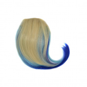 Alay & me 20cm Coloured Clip in Bang Short Straight Ombre Wig Hair for Cosplay