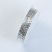 Silver Colour Wire 24 Gauge,Thickness 0.5MM WSF-101-24G