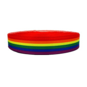 25Yards Rainbow Stripes Printed 1.6cm White Solid Grosgrain Ribbon