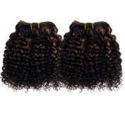 Emmet 2pcs/lot 100g Short Wave 20cm Brazilian Kinky Curly Human Hair Extension