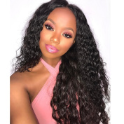 RIJIA Curly Lace Front Human Hair Wigs 130% Density Brazilian Curly Full Lace Wigs For Black Women Natural Colour