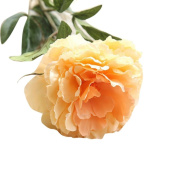 Vovotrade 1PC Artificial Fake Flowers Peony Floral Wedding Bouquet Party Home Decor
