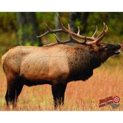 DuraMesh Archery Elk 1 Target, Brown, 60cm x 80cm