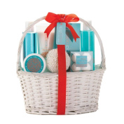 Bath Basket, Best Healthy Holiday Gift Baskets Body Care Gift Set For Her