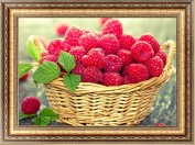 cici store DIY 5D Fruit Diamond Painting,Embroidery Cross Stitch Crafts Home Decor Gift