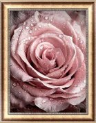 cici store DIY 5D Pink Rose Diamond Painting,Embroidery Cross Stitch Crafts Home Decor Gift