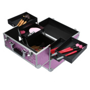 Anself Foldable Cosmetic Organiser Box Lockable Makeup Travel Case for Jewellery & Nail Art Tools