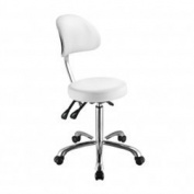 White Flat Seat Esthetician Stool With Wide Backrest USA Salon and Spa Lolli SB USA-1025B