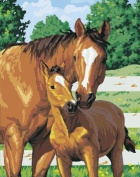 Prime Leader Wooden Framed Diy Oil Painting, Paint by Number Kit 41cm x 50cm Mother and Child-horses