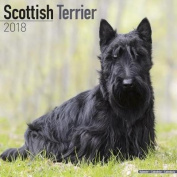 Scottish Terrier Calendar 2018