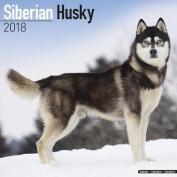 Siberian Husky Calendar 2018