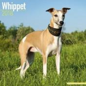 Whippet Calendar 2018