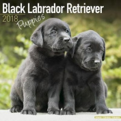 Black Labrador Retriever Puppies Calendar 2018
